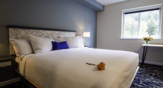 Hotels/Motels