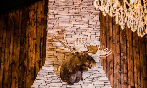 Lodges/Resorts